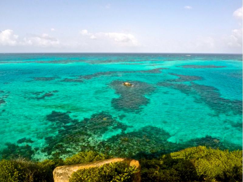 Arrecife de coral, Isla Providencia. Coral reef, Providence Island. Snorkel en el Caribe. Snorkeling in the Caribbean. Asistencia médica para turistas y viajeros en Latinoamérica. Medical assistance for tourists and travelers in Latin America.